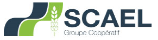 Groupe Scael
